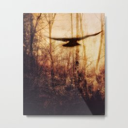 Light and Dark Metal Print