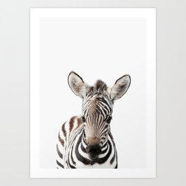 Zebra Art Art Print