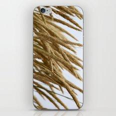 Wheat iPhone & iPod Skin