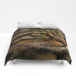 Aslan The Long Haired Tabby Cat Comforters