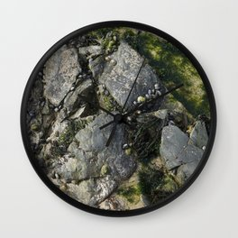 Beach Rock Pool with Seaweed and Barnacles Wall Clock