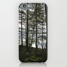 Through the Forest Slim Case iPhone 6s