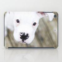 boxer iPad Cases featuring Boxer by sara montour