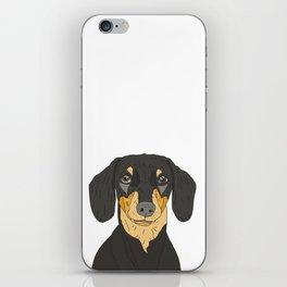 Dachshund Puppy iPhone Skin
