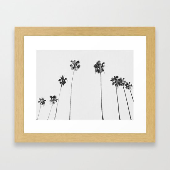 Black & White Palms by galdesign