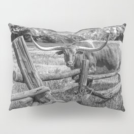 Texas Longhorn Steer by an Old Wooden Fence in Black and White Pillow Sham