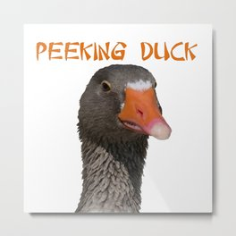 Peeking Duck Homonym Metal Print