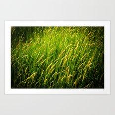 Spring Grass Art Print