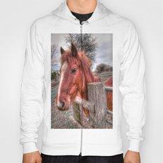 Pony  Hoody