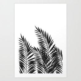 Palm Leaves Black Art Print