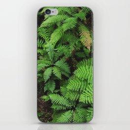 New Zealand ferns iPhone Skin
