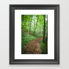 The Emerald Forest Framed Art Print