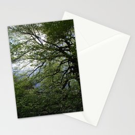 Before the Rain Stationery Cards