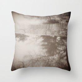 Seeing Schizophrenia: Image 3 Throw Pillow