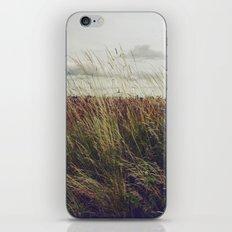 Autumn Field I iPhone & iPod Skin