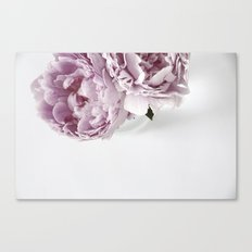 Two Peonies Canvas Print