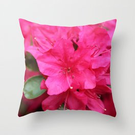 Azelea Throw Pillow