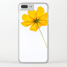 yellow cosmos flower Clear iPhone Case