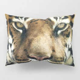 Face of Tiger Pillow Sham