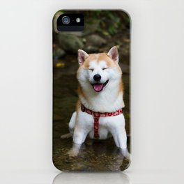 KUMA: Shiba In River 2 iPhone Case