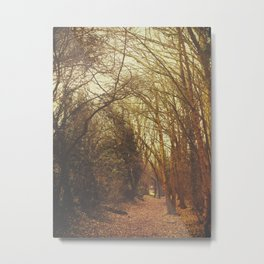 In A Cottage In A Wood Metal Print