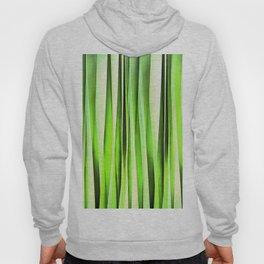 Eternal Evergreen Stripy Pattern Hoody