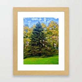 Powerful Photography Framed Art Print
