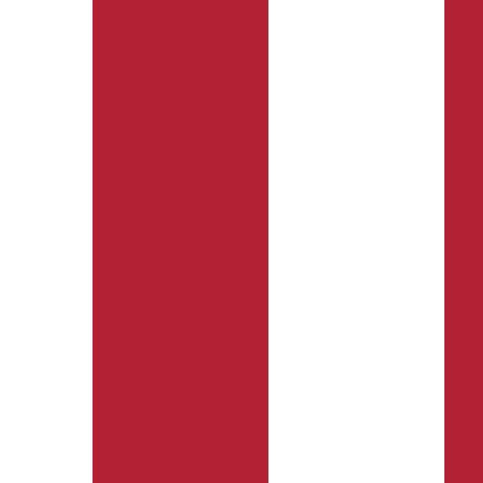 USA flag - Hi Def Authentic color & scale image Leggings