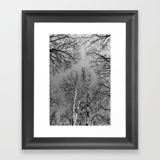 Branching Out Framed Art Print