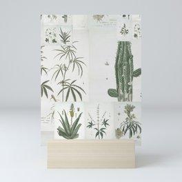 cactees Mini Art Print