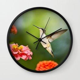 Hummingbird Hovering Wall Clock