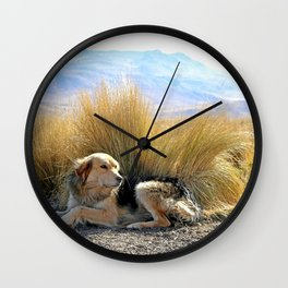 a dog in the middle of nowhere peru Wall Clock