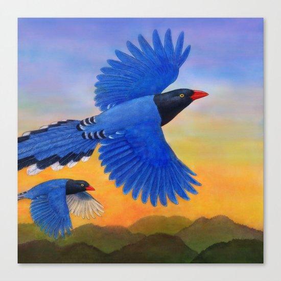 Taiwan Blue Magpie(1) Canvas Print