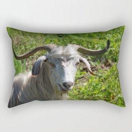 Portrait of A Horned Goat Grazing Rectangular Pillow