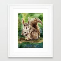 squirrel Framed Art Prints featuring Squirrel by Anna Shell