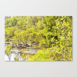 The Edge of the River Canvas Print
