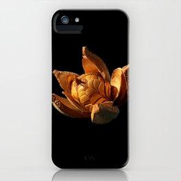 Mahogany Seeds DPG150525 iPhone Case