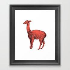 vicuña Framed Art Print