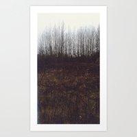 Fall Landscape #1 Art Print
