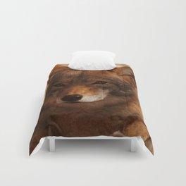 Coyote Beautiful Comforters