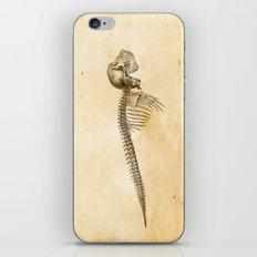 LIMINAL BEING n36 iPhone Skin