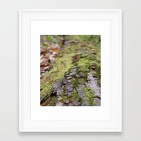 moss Framed Art Prints featuring Moss by Tayler Smith