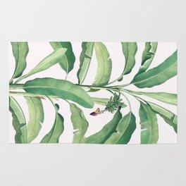 Banana leaves VI Rug
