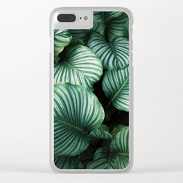 Foliage x Shiny Clear iPhone Case