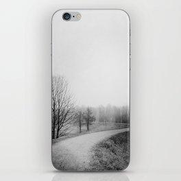 Landscape stories_Path iPhone Skin