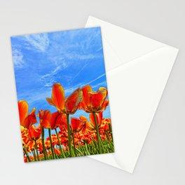 Tulip Nirvana 8 Stationery Cards