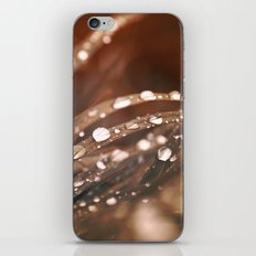 Fire and Rain iPhone & iPod Skin