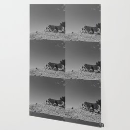 """A Castle On Sandia"" Wallpaper"