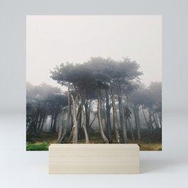 Land's End Mini Art Print