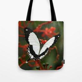Mocker Swallowtail Butterfly Tote Bag